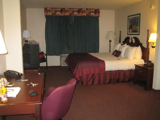 Wingate by Wyndham Fargo: This room had a King size bed, lots of room, older tv