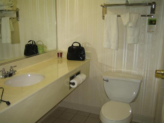 Wingate by Wyndham Fargo: Clean bathroom with large counter
