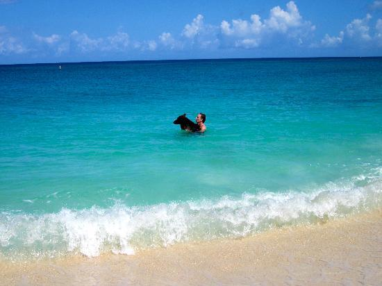 Jet Ski 7 Mile Beach Grand Cayman Picture Of Seven Mile Beach Seven Mile Beach Tripadvisor