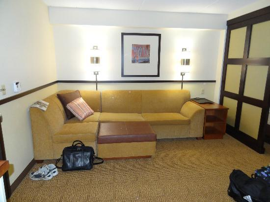Hyatt Place Herndon / Dulles Airport - East: Living Area