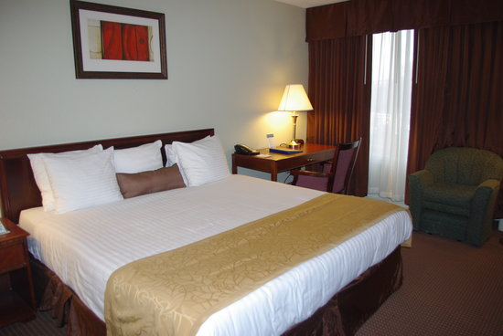 BEST WESTERN Sovereign Hotel - Albany: King Size Bedroom