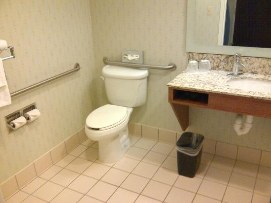 SpringHill Suites Herndon Reston: Bathroom