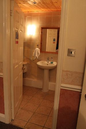 Pymgate Lodge Hotel: Bathroom is wonderfully spacious but no bath tab.