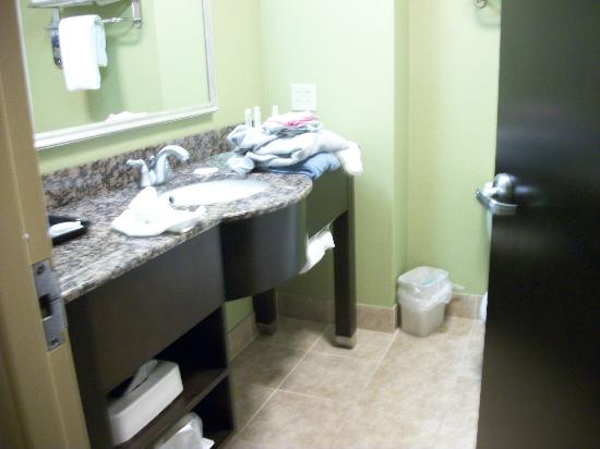 Holiday Inn Express Hotel & Suites Newport South: The bathroom.