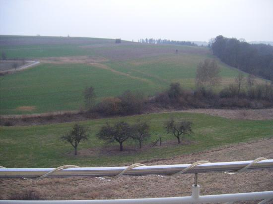 Hotel Zur Morschbach: View from the hotel