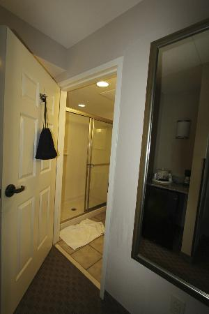 Holiday Inn Pensacola-North Davis Highway: bathroom shower