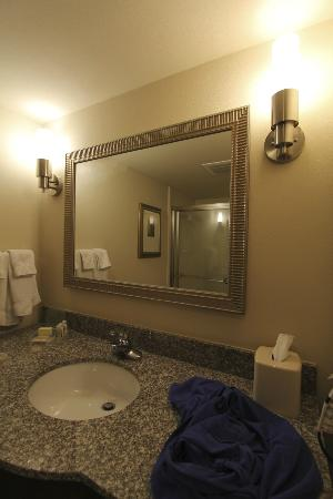 Holiday Inn Pensacola-North Davis Highway: sink area