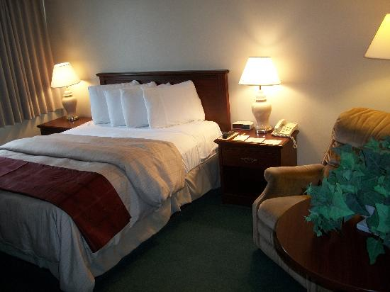 Days Inn Brockville - City Of 1000 Islands: Queen Bedded Guest Room