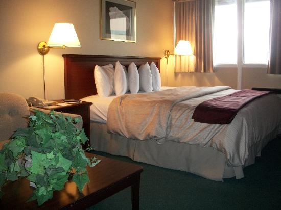Days Inn Brockville - City Of 1000 Islands: King Bedded Guest Room