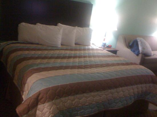 Super 8: King sized bed...VERY comfortable!