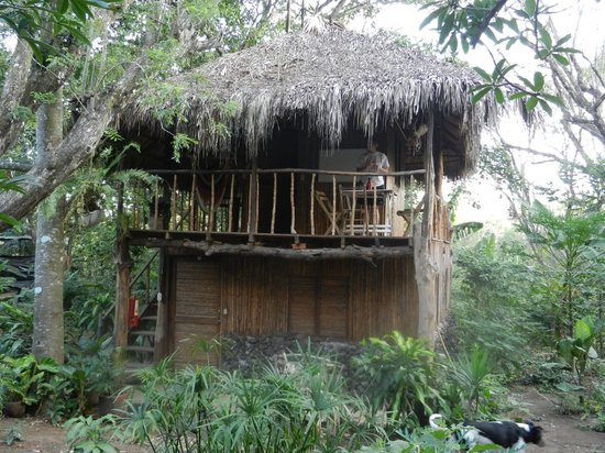 La Mariposa Spanish School and Eco Hotel: our cabin, two rooms below, and one upstairs