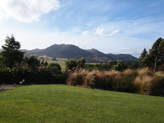 Hokonui Bed and Breakfast: View from the bedroom