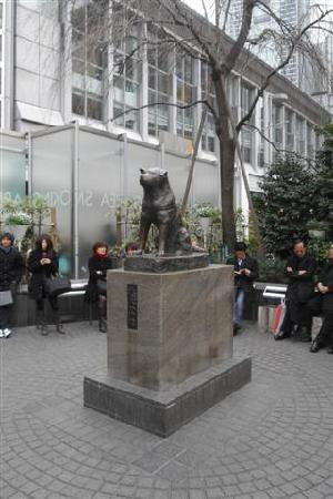 Shibuya, Japan: Hachiko