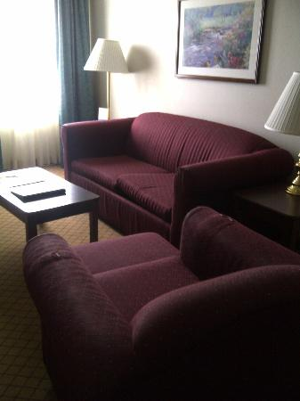 Hawthorn Suites by Wyndham Ann Arbor: Ratty furniture - note the arm of the chair