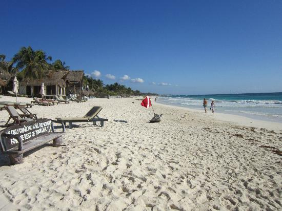 Las Palmas Maya: Our beach