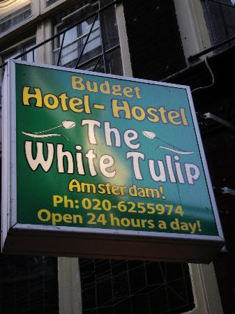 White Tulip Hostel: ENTRANCE