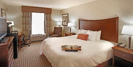 Hampton Inn &amp; Suites Richmond/Virginia Center: King Suite Room