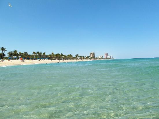Fort Lauderdale Beach Resort: Perfect Beach - Standing in ocean looking North