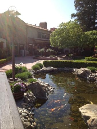 Paso Robles Inn: one of the fish ponds
