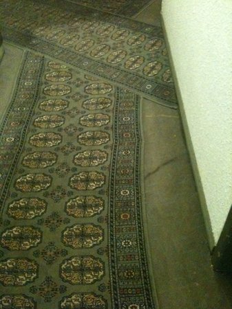 Hotel Ours Blanc Centre: filthy carpeted hallways