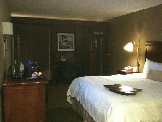 Hampton Inn Rockford: Hampton Inn king bed room