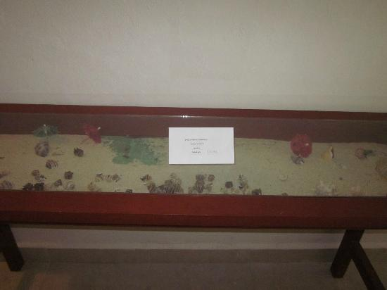Casa Ixchel: Table in hallway filled with sand and shells