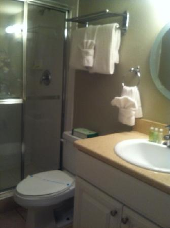 Silver Sands Gulf Beach Resort: bathroom