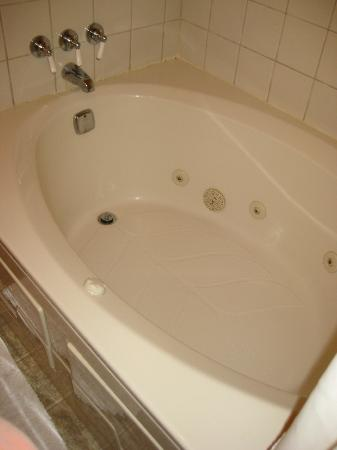 Firefly Inn Bed & Breakfast: jacuzzi bathtub