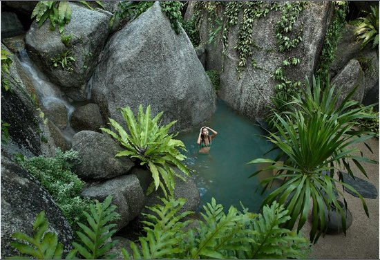 Tamarind Springs Forest Spa