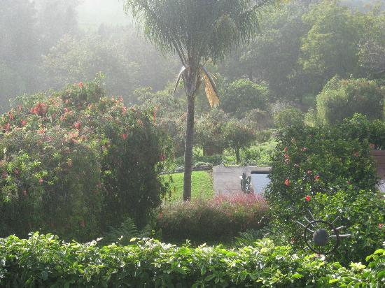 Aromatherapy Foundation of Maui: Beautifully landscaped grounds