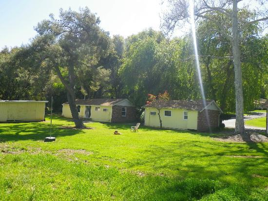 Lazy J Ranch-Americas Best Value Inn: Behind kitchen cottages, nice lawn