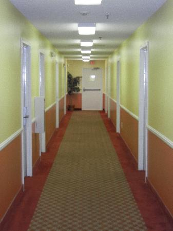 Douglas Inn & Suites: Interior