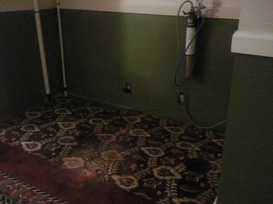 Comfort Inn I-95 North: No more vending machines; just a dirty stained carpet