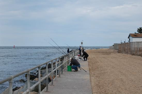 Surfs up picture of delaware seashore state park for Rehoboth beach fishing