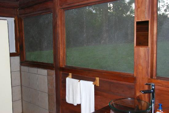 La Anita Rainforest Ranch: The view from the bathroom