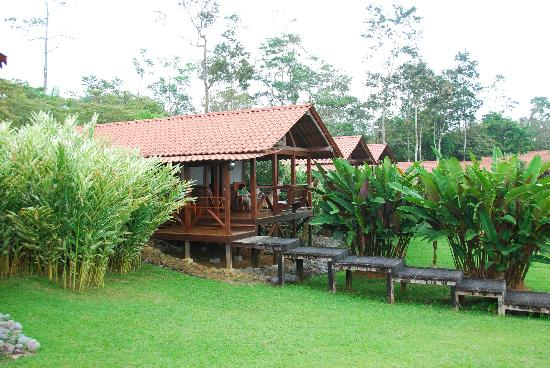 La Anita Rainforest Ranch: One of our cabins