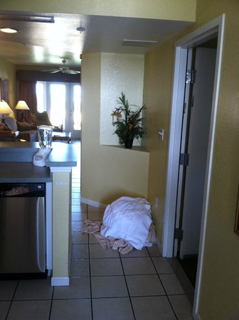 Vacation Villas at Fantasy World II: we cleared everything upon check out...left it clean.