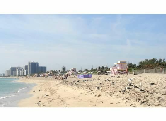 Ocean Palm Motel: view of haulover beach looking south