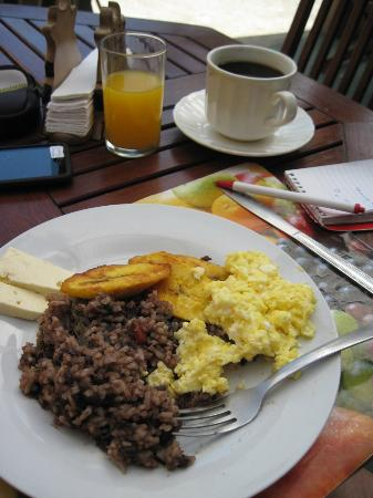 B&B Vista Los Volcanes: Juice, coffee, plantains, rice/bean dish, eggs, cheese