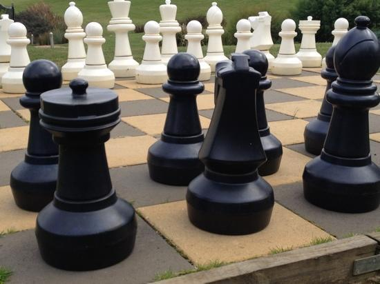 life size chess picture of balgownie estate vineyard