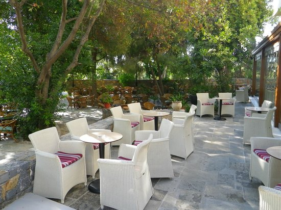Apollonia Beach Resort & Spa: Bar / Cafe