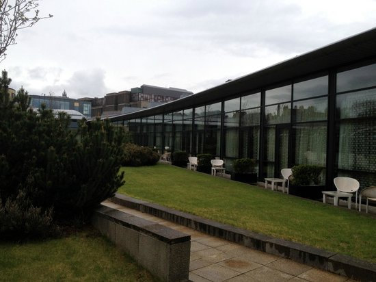 The Glasshouse: Roof garden