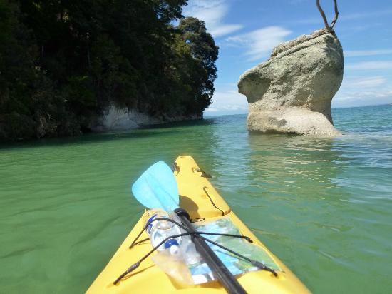 Fraser Highlands B&B: The kayaking off the coast of Abel Tasman was simply spectacular.