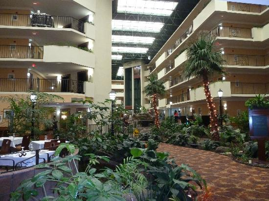 Waterfall In Hotel Picture Of Embassy Suites Memphis Memphis Tripadvisor