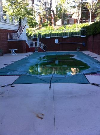 Cavalier Inn at the University of Virginia: pool