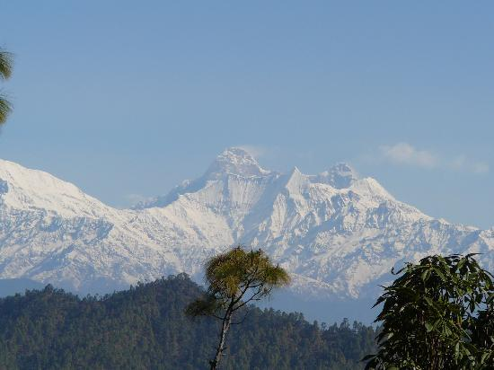 Photos of Mountain Resort, Khali Estate, Almora