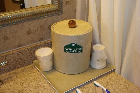 Wingate by Wyndham LaGrange: Ice bucket