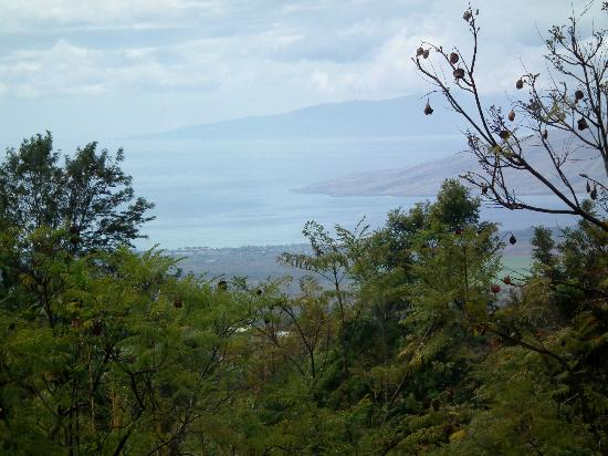 Kula View: Ocean view (zoomed in)
