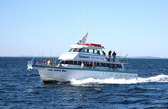 The top 10 things to do near kentville on the ocean for Deep sea fishing hampton nh