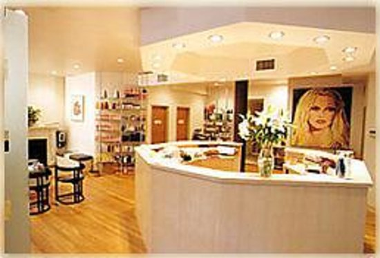 Feline day spa new york city ny hours address reviews tripadvisor - Salons fotos ...